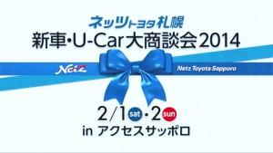 netz3